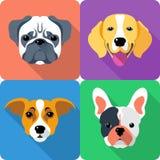Set dog icon flat design Royalty Free Stock Photography