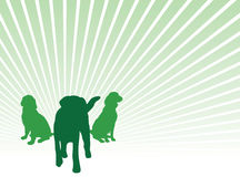 Set of dog silhouettes Royalty Free Stock Photo