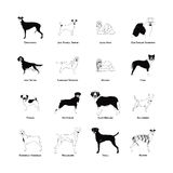 Set of dog silhouettes Stock Photography