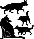 Set of dog silhouettes German Shepherd Dogs Royalty Free Illustration