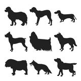 Set of dogs black silhouette Stock Image