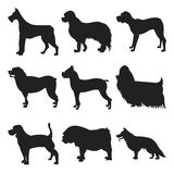 Set of dogs black silhouette Royalty Free Stock Photo
