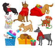 Set of dogs with Christmas objects. Home pets. Flat vector elements for greeting cards or posters stock illustration
