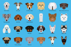 Set of dogs Royalty Free Stock Photography