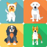 SET dogs icon flat design royalty free stock photography