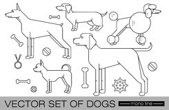 Set of dogs. Set of images of individual figures of dogs of different breeds  on a white background and related subjects. Vector illustration of a modern design Stock Image
