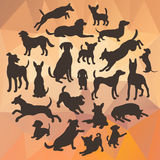 Set of dogs silhouette on abstract polygonal background. Collection of vector silhouette in circle. Stock Photography