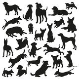 Set of dogs silhouette. Collection of 25 vector silhouette. Stock Images
