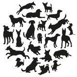 Set of dogs silhouette. Collection of vector silhouette in circle. Stock Photography