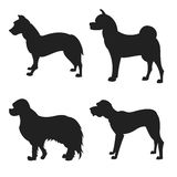 Set of dogs silhouette Stock Images