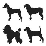 Set of dogs silhouette Stock Photo