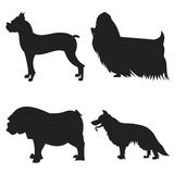 Set of dogs silhouette Royalty Free Stock Photos
