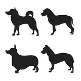 Set of dogs silhouette. The square picture small group of black shadows of four thoroughbred dogs on the white background Royalty Free Stock Photos
