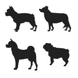 Set of dogs silhouette. The square picture small group of black shadows of four thoroughbred dogs on the white background Stock Photo