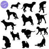Set of dogs silhouette. Vector. Royalty Free Stock Photo