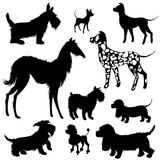 Set of of dogs silhouettes - scottish terrier, dalmatian, dachsh Stock Photo