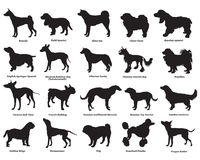 Set of dogs silhouettes-3 Stock Photography