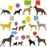 Set of dogs with speech balloons. Illustrated set of colorful dogs with speech balloons, white background Royalty Free Stock Photo