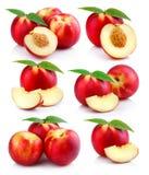 Set dojrzałe brzoskwini owoc z zieleń liśćmi odizolowywającymi Fotografia Royalty Free