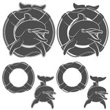 Set of dolphin design element. Vector EPS10 Stock Photography
