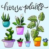 Set domów kwiaty i rośliny ilustracji