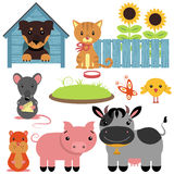Set of domestic animals Stock Photo