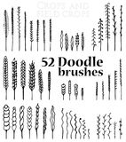 Set of Doodle brushes in the form of spikelets and grass and twi. Set of 52 isolated black Doodle brushes in the form of spikelets and grass and twigs and other Royalty Free Stock Photography