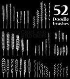 Set of Doodle brushes in the form of spikelets and grass and twi. Set of 52 isolated white Doodle brushes in the form of spikelets and grass and twigs and other Stock Images