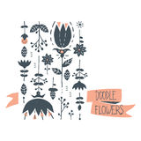 Set of doodle flowers. Cute flowers in hand drawn style Stock Image