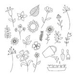 Set of doodle flowers and plants Royalty Free Stock Images
