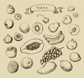 Set of Doodle Fruits hand drawn in  Stock Photo
