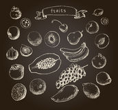 Set of Doodle Fruits hand drawn in  Royalty Free Stock Photography