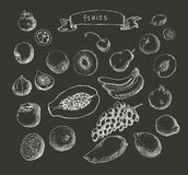 Set of Doodle Fruits hand drawn in  Royalty Free Stock Photo