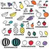 Set of doodle fruits - for scrapbook or design. Hand-drawn vector illustration Royalty Free Stock Image