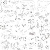 Set doodle kwiaty Zdjęcia Stock
