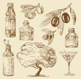 Set doodle olive oil Stock Images