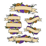 Set of doodle ornate fruit ribbons Royalty Free Stock Image