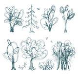 Set of doodle plants Stock Image