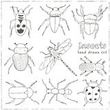 Set of doodle sketch Bugs and beetles. Insects collection kit.  vector illustration Royalty Free Stock Photos