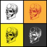 Set of doodle skulls. Stock Photos