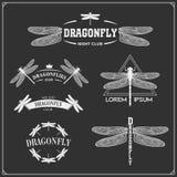 Set of dragonflies emblems. Vector illustration Stock Photo