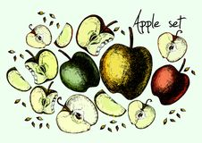 Set of drawing apples Stock Image
