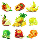 Set of drawing fruit. Set of isolated fruit with a slice - drawn by oil paints Stock Photos