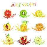 Set of drawing fruits with a slice Stock Photos