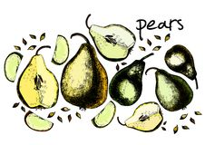 Set of drawing pears Stock Image
