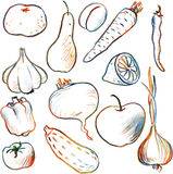 Set of drawing vegetables and fruits. Set of vector vegetables and fruits drawing by colored pencils, hand drawn vector illustration vector illustration