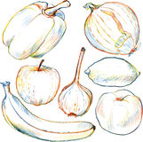 Set of drawing vegetables and fruits Stock Photos