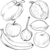 Set of drawing vegetables and fruits Stock Photo