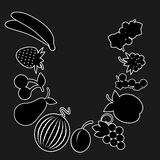 Black and white version of the fruit. Set of drawings in black and white fruit color. Vector Illustration Stock Image