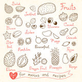 Set drawings of fruit for design menus, recipes Stock Photo